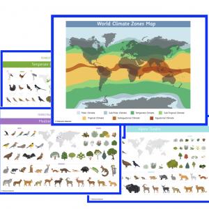 Ecosystems Impressionistic charts